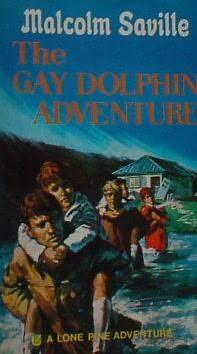 Gay Dolphin Adventure